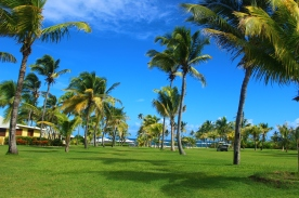 Nevis' only plantation with immediate access to the beach Nisbet Plantation Beach Club
