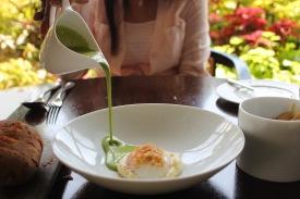 Potato soup, soft poached hen's egg, spring onions
