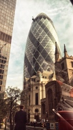 30 St Mary Axe, aka the Gherkin building, reminds me of a faberge eye. I snapped this shot from my Uber before I knew that that's where I'd be meeting my friend for coffee!